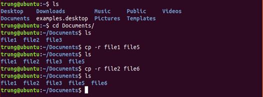 lenh 8 - 1 số câu lệnh cơ bản trong Linux (Ubuntu)
